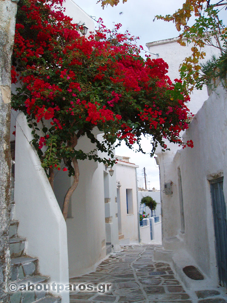 Strolling at the alleys of Paros