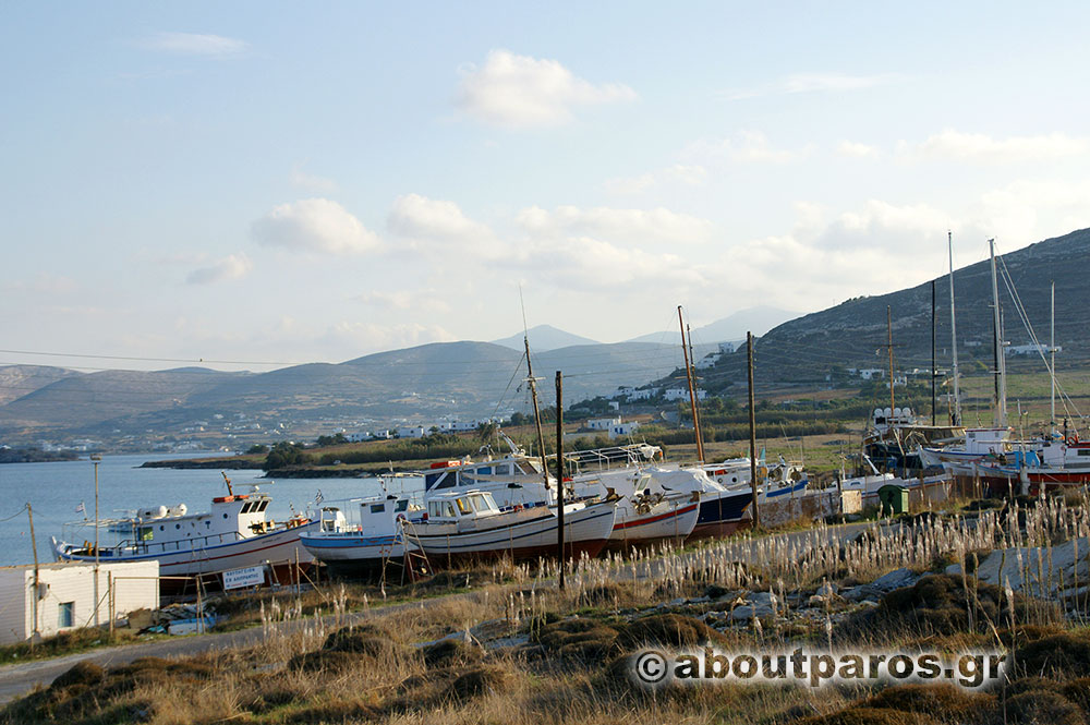 Traditional fishing boats in the environmental park of Paros