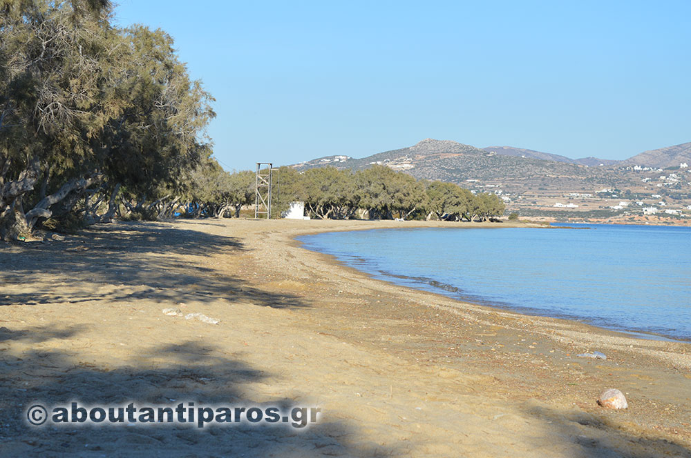 The beach at the harbour of Antiparos