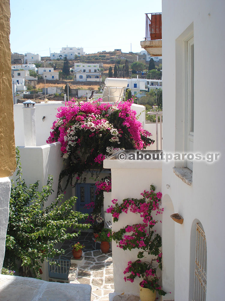 Walking around Lefkes village