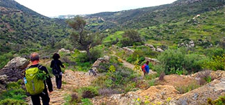 hiking at the trails of Paros